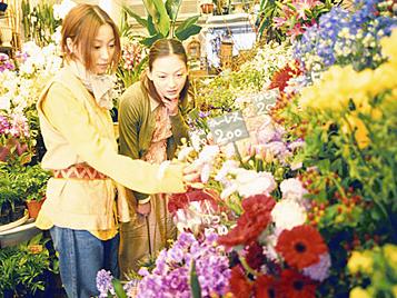 FLOWER MARKET 花市場